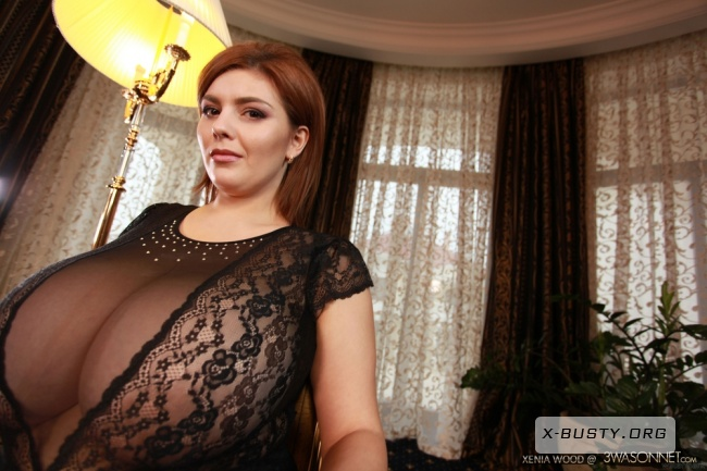 Xenia Wood - Xenia Sheer Top